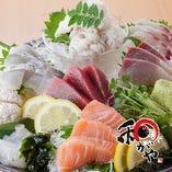 自慢の海の幸を、お造り・お寿司等でご堪能!!