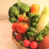 自家農園栽培 新鮮野菜【東京都練馬区】