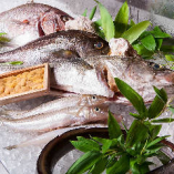 長浜市場から毎日仕入れる鮮魚!【福岡県】