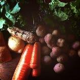 奈良明日香村から届く地元の有機野菜