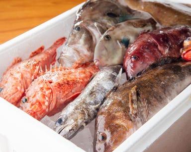 魚魚魚  メニューの画像