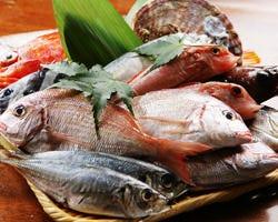 朝とれたピチピチの鮮魚を 日本全国より航空便で直送!