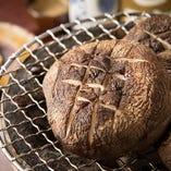 「反町さんのしいたけ」は、肉厚で大きく豊かな味わいが特徴。