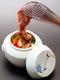 壷カルビ。壷の中にはタレに漬け込んだカルビと野菜がタップリ!