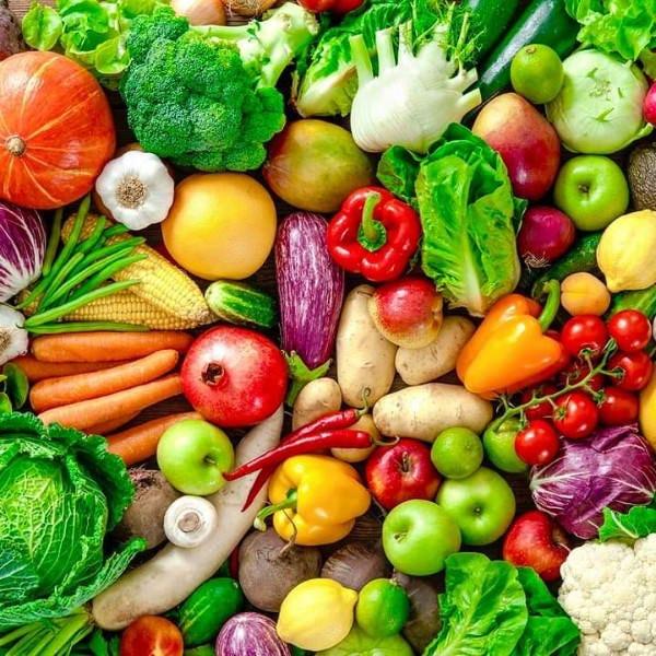 産地直送の無農薬有機野菜