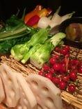 新鮮地野菜かご盛り