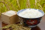 【6】 佐渡島のコシヒカリご飯