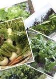 当店はこだわり自然農法の野菜を使用しております♪