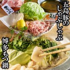もつ鍋・水炊き・博多・九州料理人気