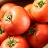 地トマト5種盛り