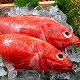 職人が目利きした価値の高い高級魚「北海道産きんき」【北海道】