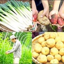 風土を生かした能登野菜を堪能!