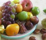 和歌山各地の農家さんに出向き直接分けてもらう青果物【和歌山県各地】