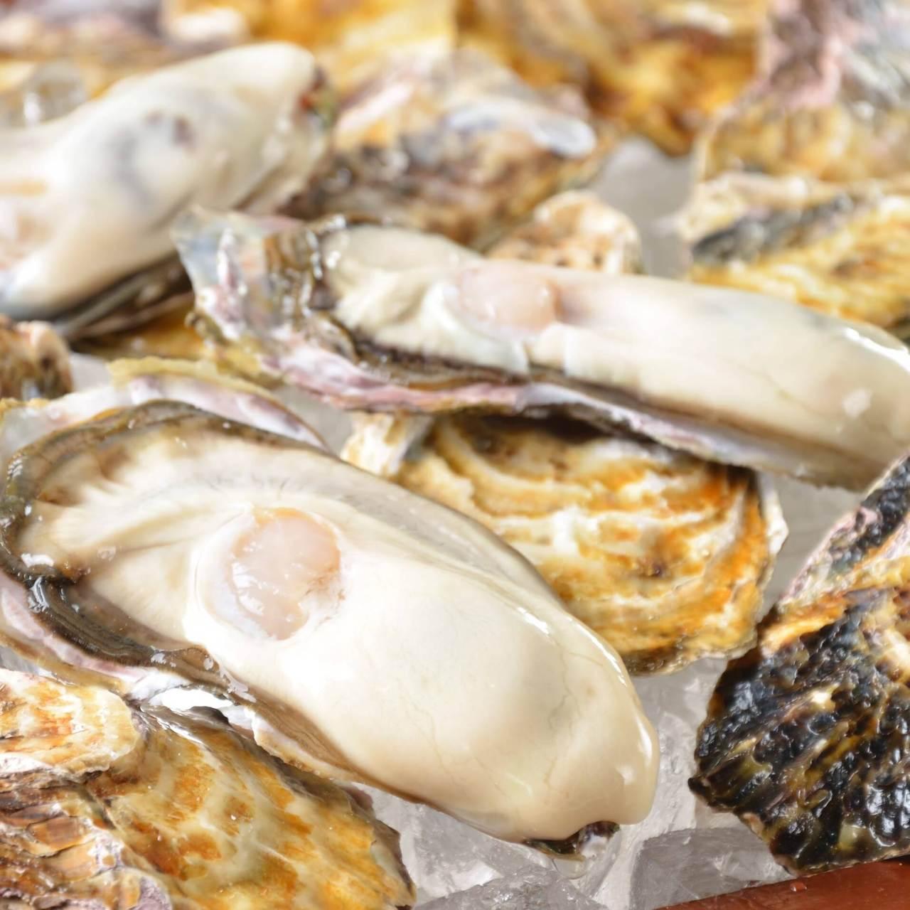 毎朝仕入れる新鮮な牡蠣