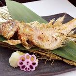 山口県産 甘鯛の原始焼き(一尾)