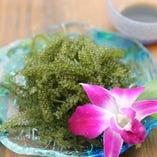 【海ブドウ】 プチプチとした食感と磯の香りが堪らない逸品