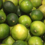 契約農家 高木さんから届く国産レモン使用【和歌山県】