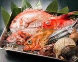 日本海の海の幸と国産天然素材にこだわっております