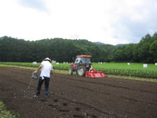 信州木祖村にそばの種を蒔きました。