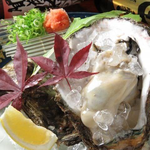 【広島づくし10品】牡蠣、穴子、カワハギ...安芸地物食材を余すことなく堪能◎贅沢コース