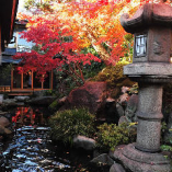 【庭園を愛でる】 春夏秋冬、うつろう季節をお愉しみください。