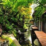 風光明媚な建物と庭