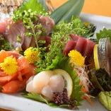 全国から産地直送の鮮魚【宮崎県島の浦をはじめ福井や萩など】