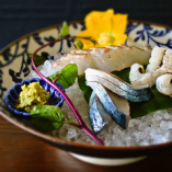 三河湾で採れる地魚【愛知県三河湾】