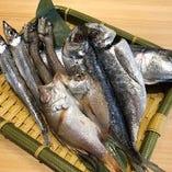 富山湾の干物 5種盛り合わせ