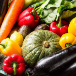産地直送!みずみずしく新鮮な季節野菜を使用!【神奈川県鎌倉市】