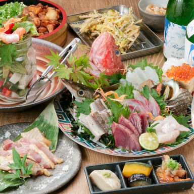 地魚食堂 鯛之鯛 難波店 コースの画像