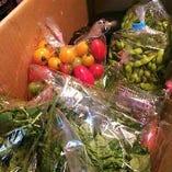新鮮野菜は山形、九州、愛知など全国から良い食材取り揃えてます