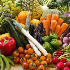 県内で朝収穫したばかりの野菜