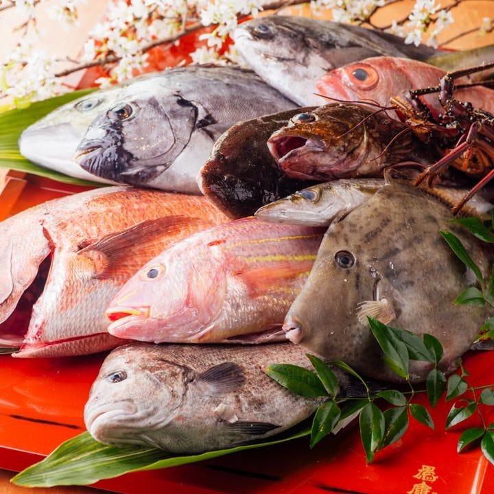 新鮮魚介や熊野牛など紀州食材が満載