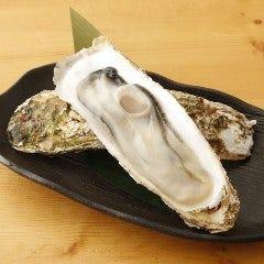桃浦産 活〆牡蠣