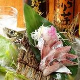 朝獲れ鮮魚の刺身