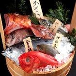 <全国各地>厳選された鮮魚【富山県】