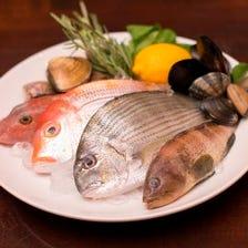 三崎港直送の鮮魚をお好みの調理法で