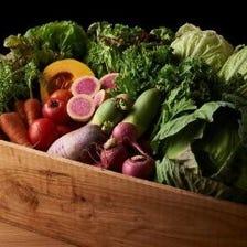 関東の農家さんから直接仕入れた野菜
