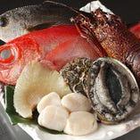 豊洲直送豊富な海鮮【豊洲】