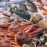 豊洲市場直送!!新鮮魚介類【豊洲市場】