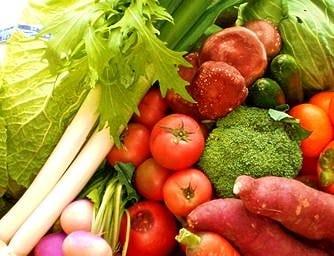 地元野菜にこだわり素材の味を活かす