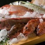 季節の魚を使ったお鍋が人気です