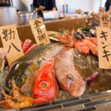 産地直送の鮮魚【国産】