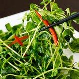 豆苗をオリーブオイル、にんにくで炒めた人気の青菜あっさり炒め