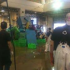 三浦半島から直送の朝どれ鮮魚を使用