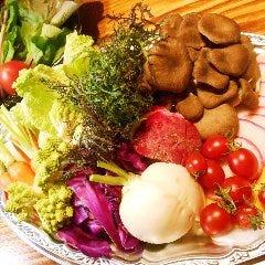 野菜ソムリエのベジ鍋セット (3~4人前)
