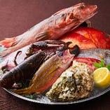 【高知県産旬魚】SALVATOREでは、新鮮な魚介もお楽しみいただけます。お好きな調理方法をご指定ください!(炭火焼・アクアパッツァ・ロースト etc)