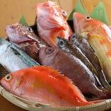 お魚丸ごと一尾を、お好きな調理方法で楽しむこともできますよ!