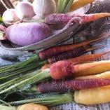 産地直送の新鮮野菜&こだわり野菜はカラダに優しく味わい濃厚!